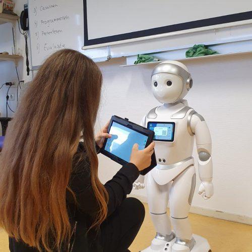 robot robin 2